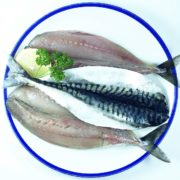 mackerel_fillets_3