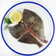 turbot_tranche