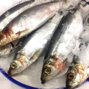 herring_whole_4