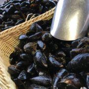 mussels_baskets