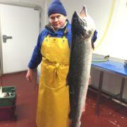 salmon_vlad