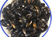 mussels 1kg – 1