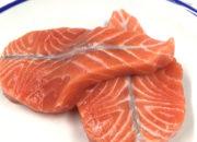 salmon_gannet_cut6