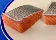 salmon supreme 2