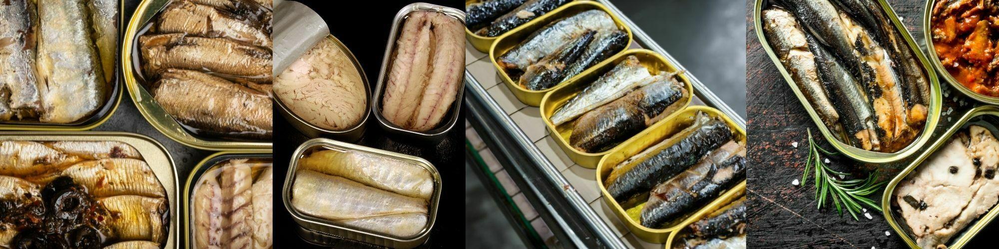 Fish Tins-banner-image